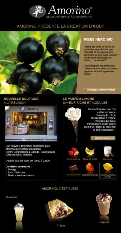 Newsletter Amorino